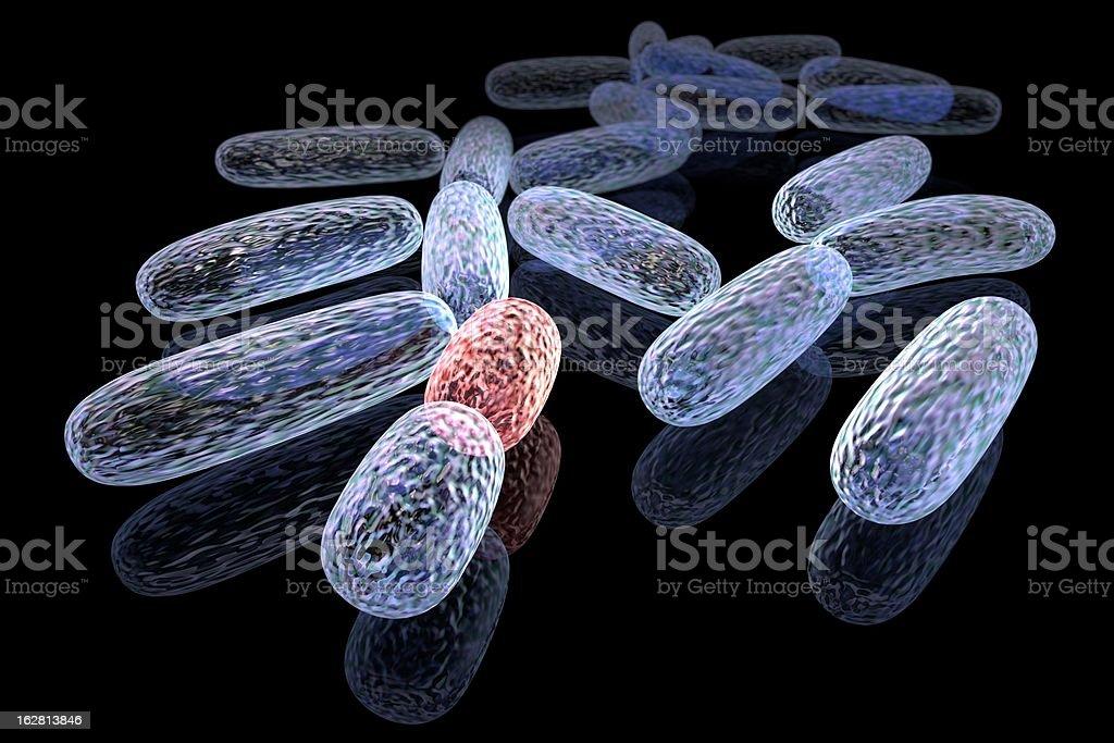 Mutated bacteria royalty-free stock photo