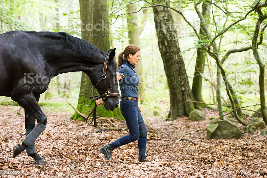 Mutual understanding between woman and black dressage horse stock photo