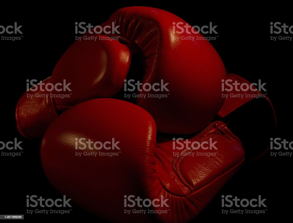 My Boxing Gloves royalty-free stock photo
