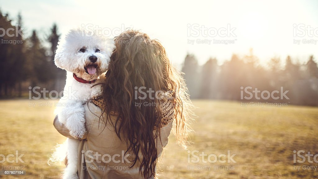 My dog is going with me everywhere stock photo