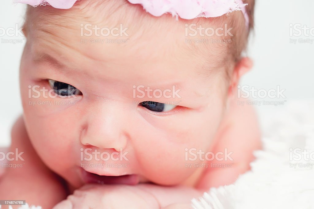 My first week in this new world royalty-free stock photo