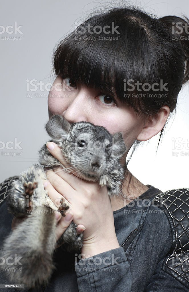 My friend and her's Chinchilla Cat royalty-free stock photo