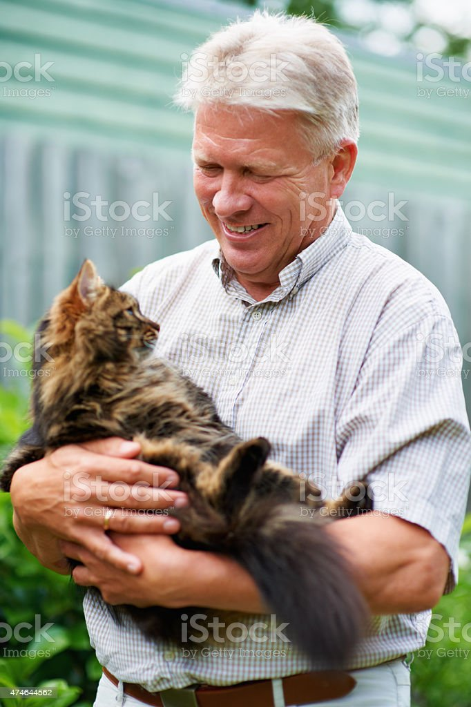 My furry little companion stock photo
