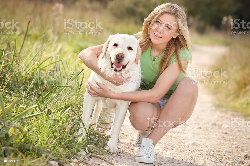 my labrador retriever stock photo