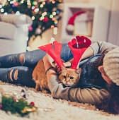 My lovely Christmas cat