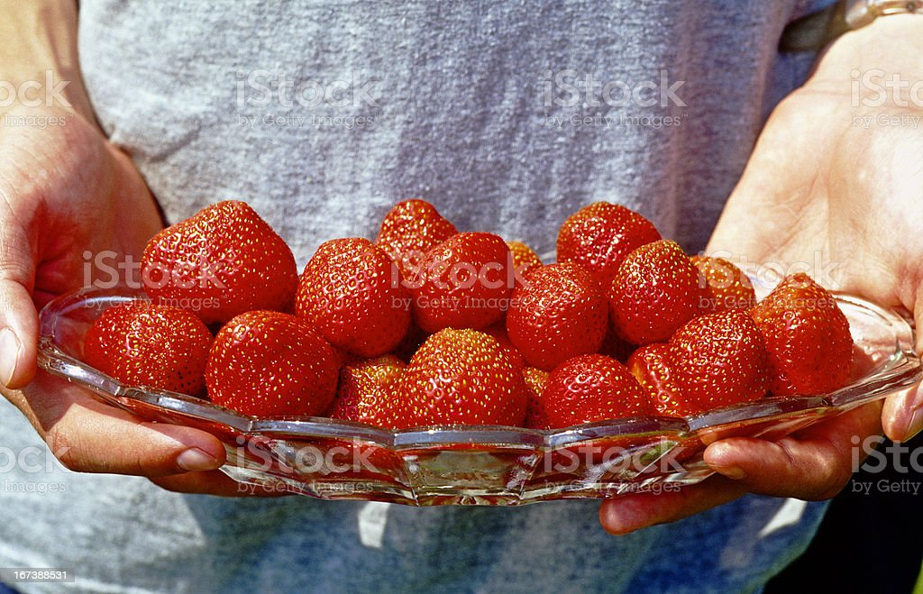 My own strawberries royalty-free stock photo