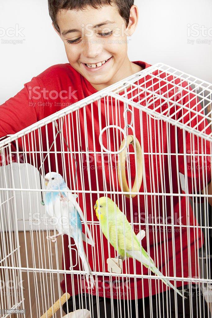 My pets royalty-free stock photo