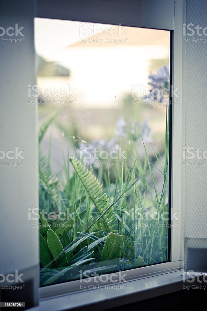 my window royalty-free stock photo