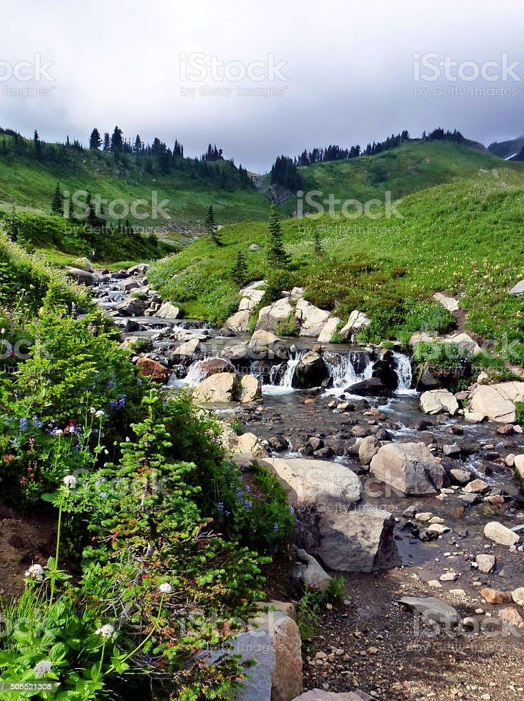 Myrtle Creek in Mt Rainier National Park stock photo