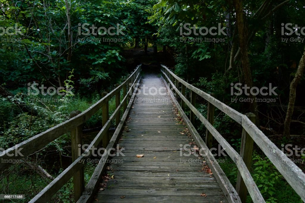 Mysterious Bridge Into the Forest stock photo