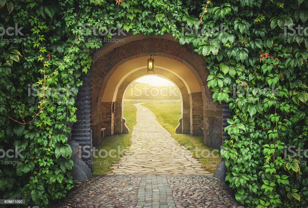 Mysterious gate sunny entrance.  New life concept stock photo
