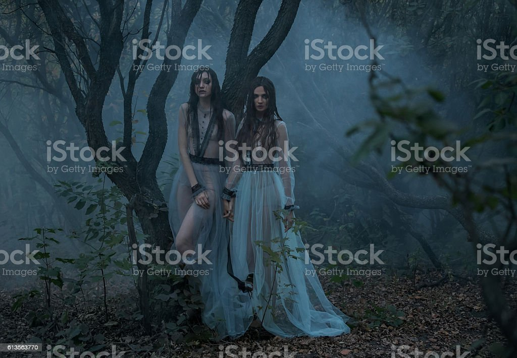Mysterious lady with long black hair walk in spooky woods stock photo