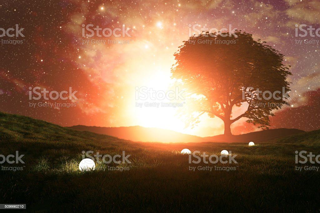 Mysterious light path in the meadow stock photo