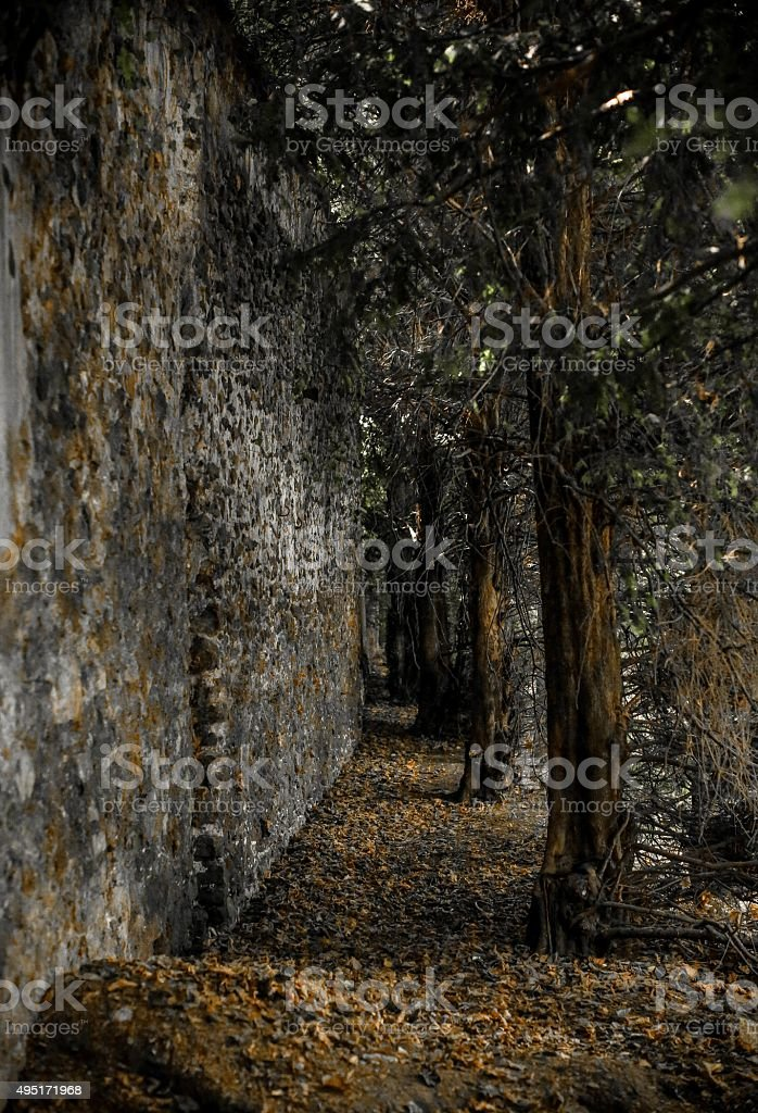 Mysterious Meaux stock photo