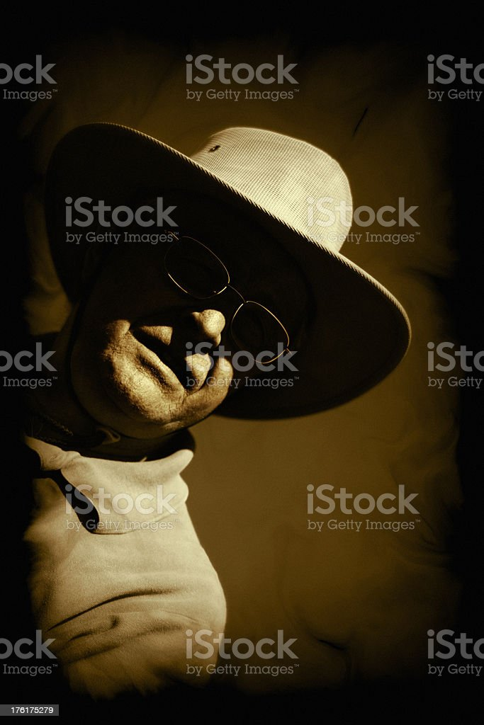 Mysterious Stranger royalty-free stock photo