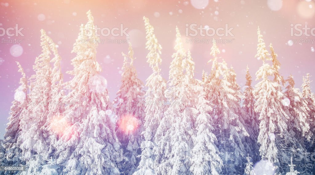 Mysterious winter landscape majestic mountains in stock photo