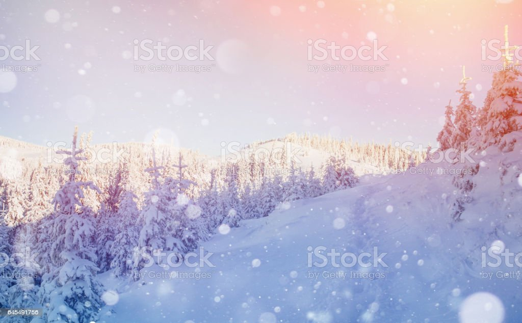 Mysterious winter landscape majestic mountains stock photo