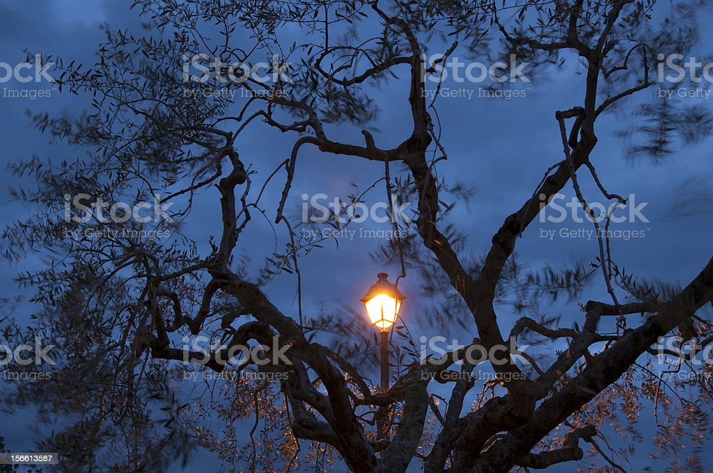 Mystery at dusk royalty-free stock photo