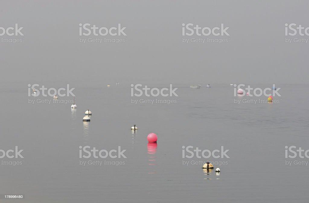 Mystery of coastal calm royalty-free stock photo
