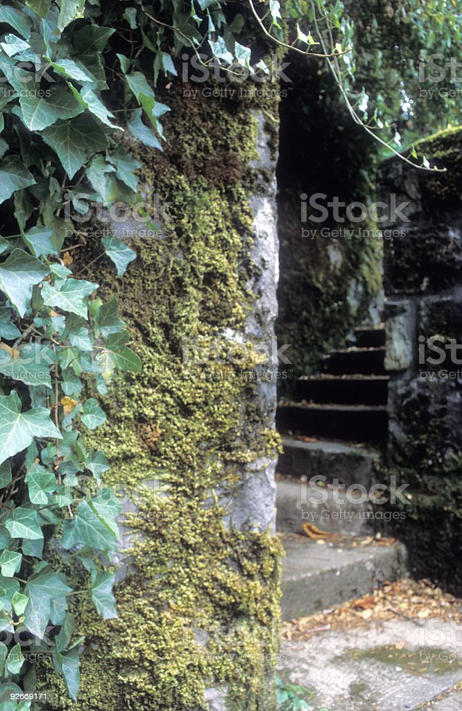 Mystery stairs royalty-free stock photo