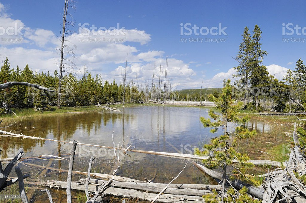 Mystic Falls Trail Pond in Biscuit Basin Area of Yellowstone stock photo