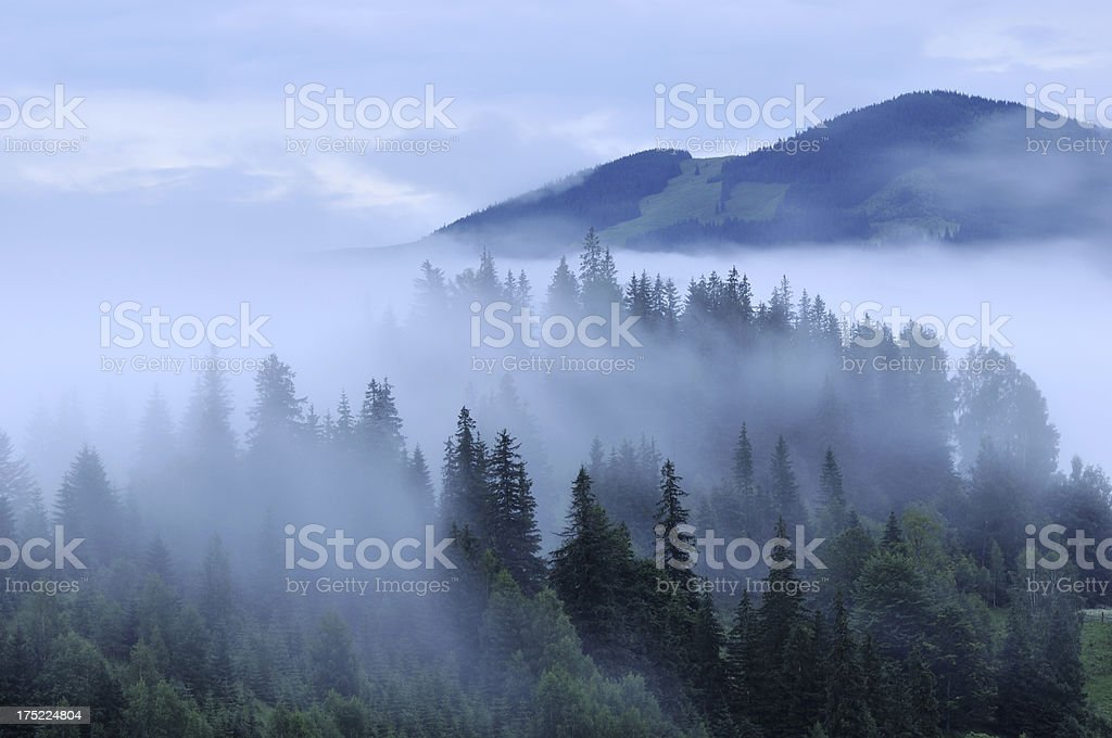 Mystic fog at dawn in mountains royalty-free stock photo