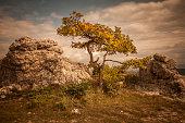 Mystic landscape, France