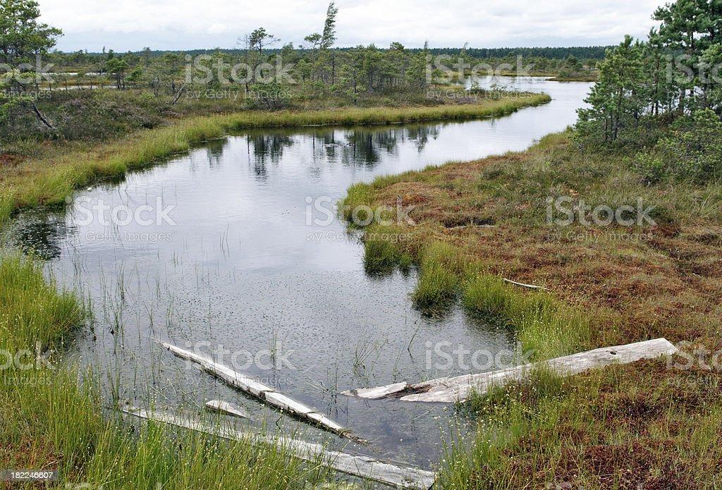 Mystic Moor Area stock photo