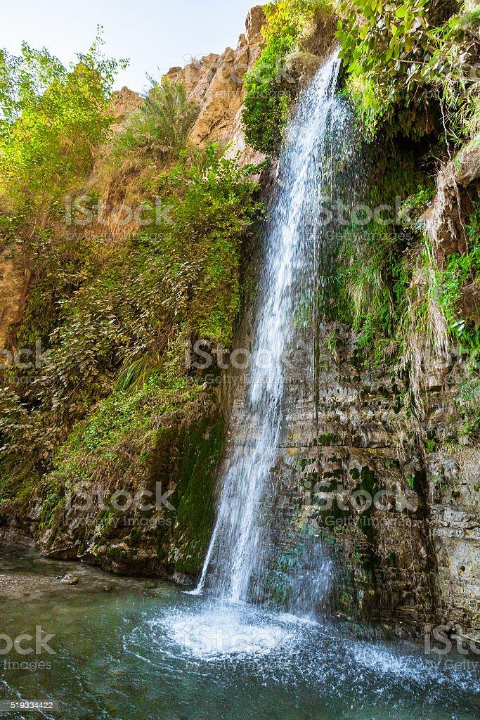 Nahal David Waterfall stock photo