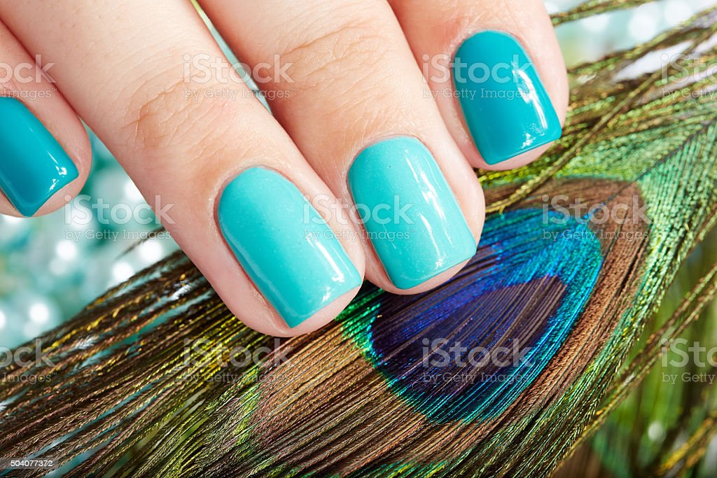 Nails with manicure and peacock feather stock photo
