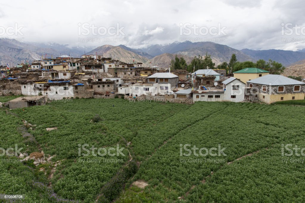 Nako Village stock photo