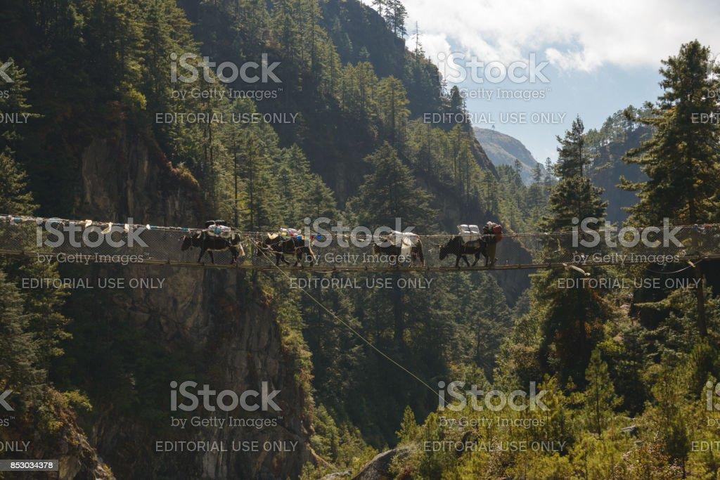 Namche Bridge stock photo