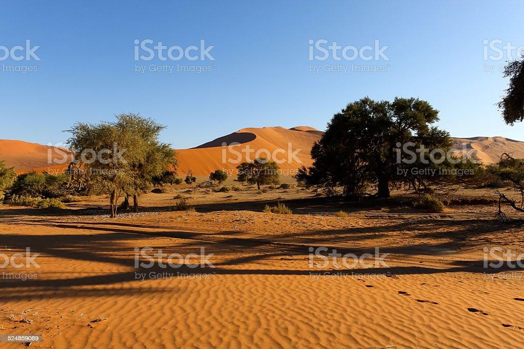 Namib Desert, Namibia stock photo