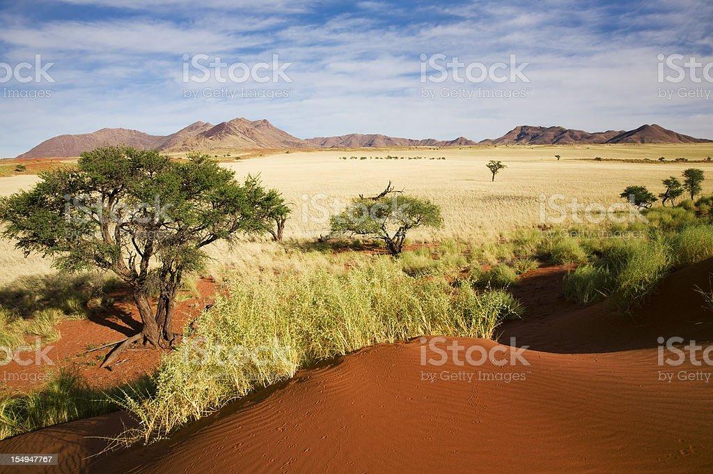 Namibia prairie landscape stock photo