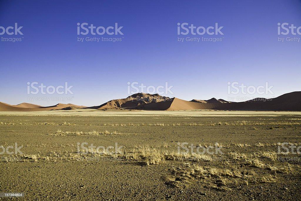 Namibian Desert Scene royalty-free stock photo