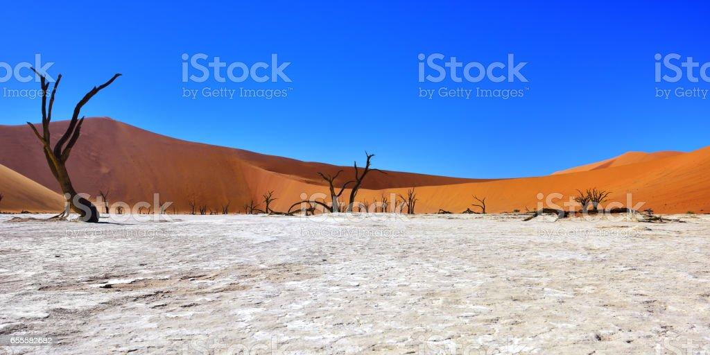 Namib-Naukluft National Park, Namibia, Africa. stock photo