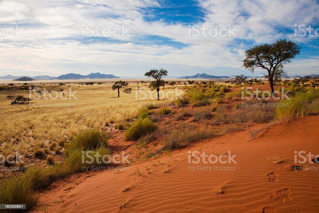 Namibrand Duenen stock photo