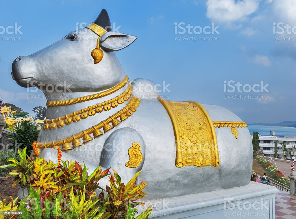 Nandi stock photo