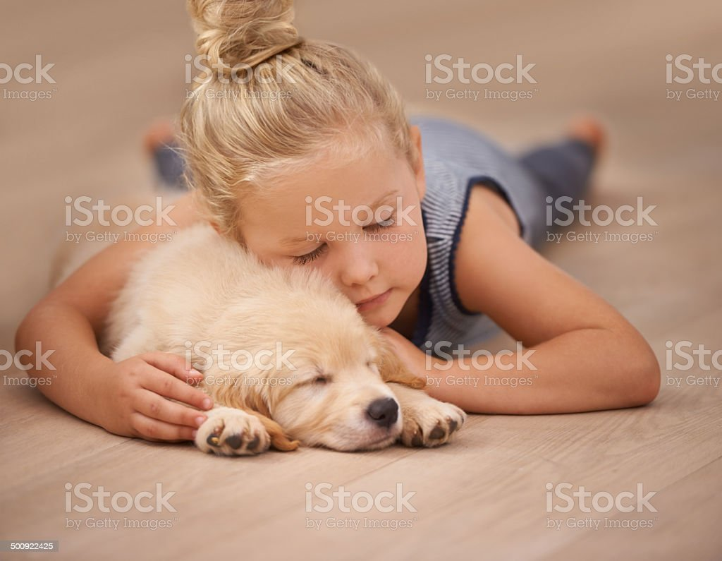 Nap time for the two friends stock photo