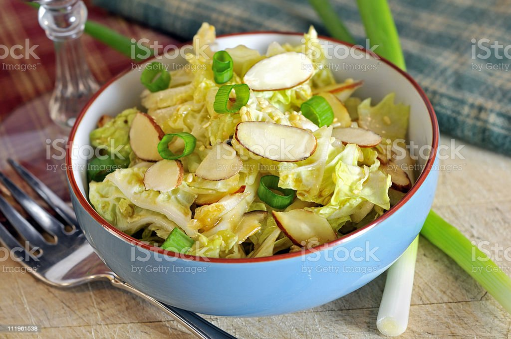 Napa Cabbage Coleslaw royalty-free stock photo