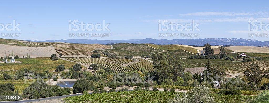 Napa panorama landscape royalty-free stock photo