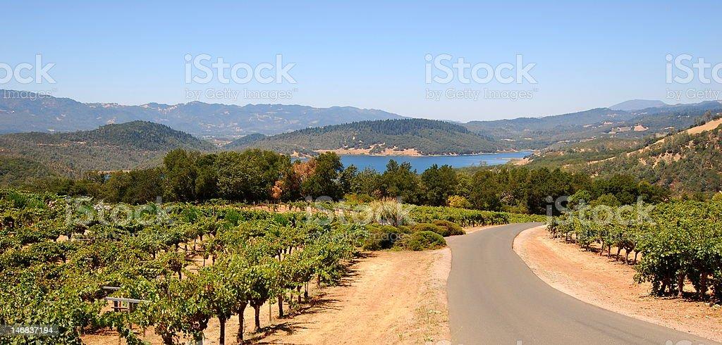 Napa Valley Panoramic royalty-free stock photo