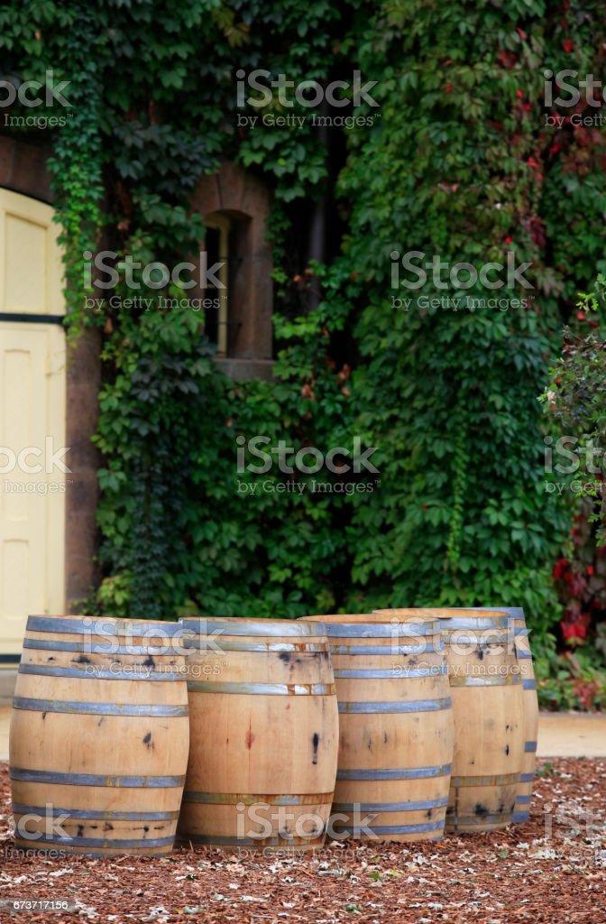 Napa valley vineyard, California stock photo