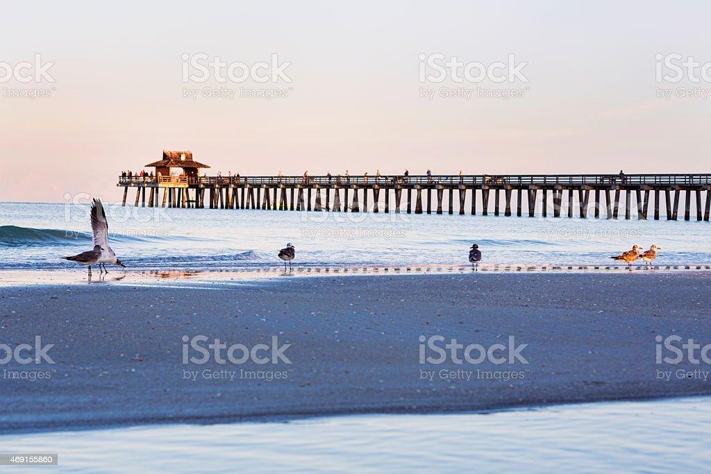 Naples Pier stock photo