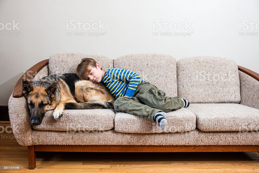 Napping on the couch with a pet stock photo