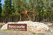 Naracoorte Town Sign