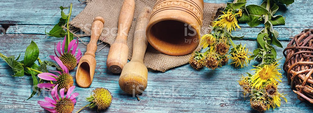 nard and herbs stock photo