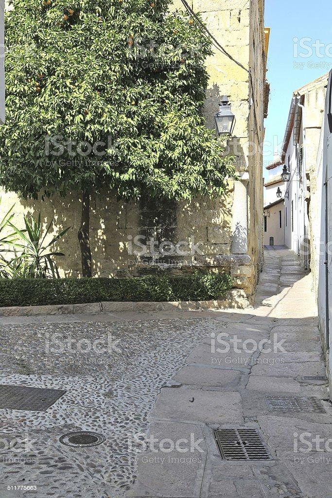 Narrow alley in Juderia quarter, Cordoba, Spain stock photo