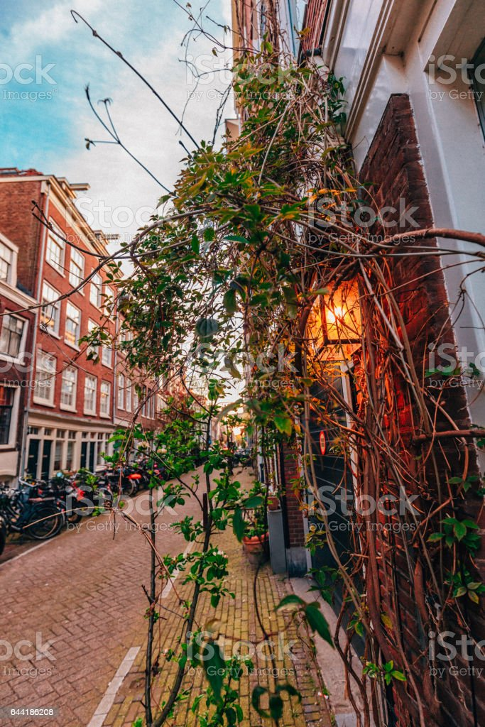 Narrow medieval street view in Amsterdam stock photo