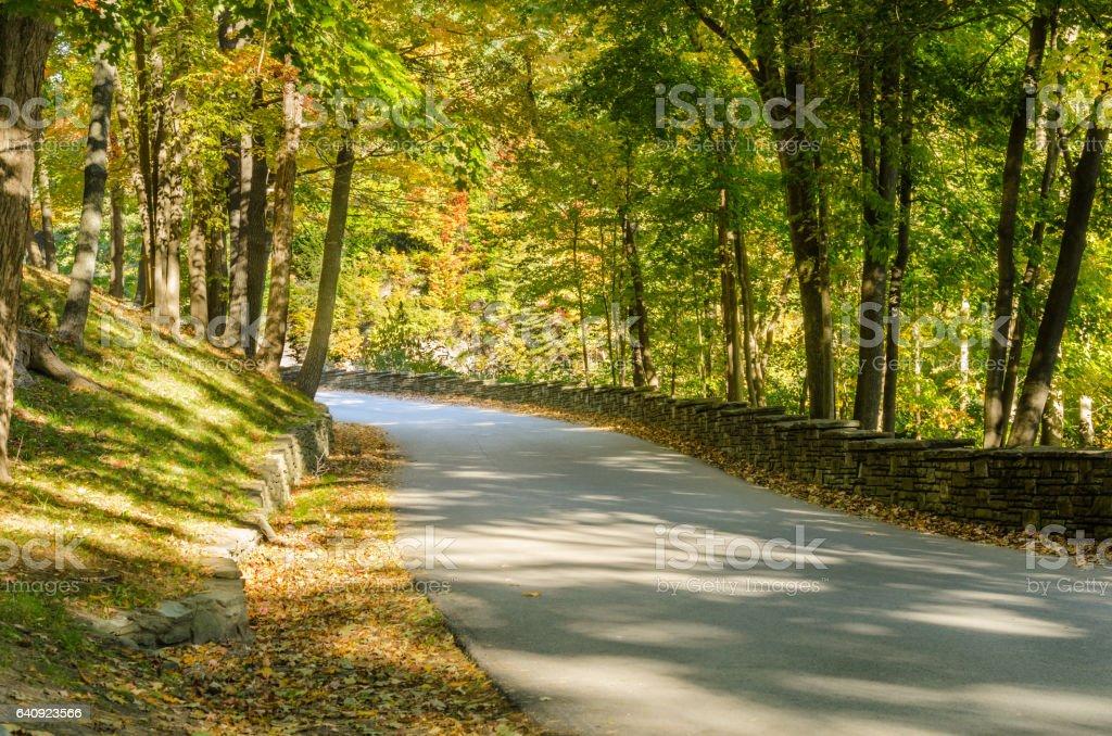 Narrow Mountain Road in Fall stock photo